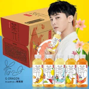 NongFu Spring Fruit Tea 500ml (10 bottles) 农夫山泉茶派 10瓶